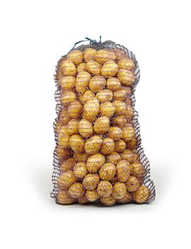Картофель, сорт Румба